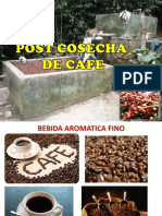Cosecha - Postcosecha de Cafe