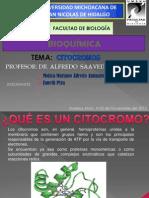 citocromo