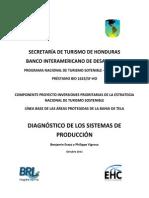 1. Diagnóstico Sistemas de Producción