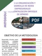 Metodologia Para La Organizacion