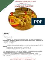 COSTOS DE PRODUCCIÓN DE POLLOS.pptx