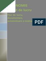 Economie CAIET de LUCRU Mihăescu Mihai
