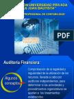 auditoria financiera 2013