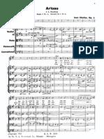 Sibelius-Arioso Op.3 Voice and Orchestra