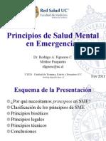 Principios Salud Mental en Emergencias