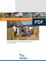 Agricultural Genetic Engineering and Biodiversity