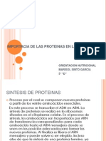 Importacia de Las Proteinas en La Dieta