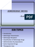 Adrenergic Drugs.pptx
