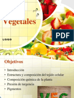 Vegetales y Granos