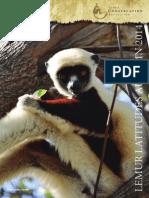 Lemur Latitudes Dec 2014
