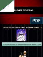 Patología General.pptx