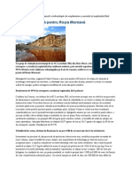 Solutia ecologica pentru Rosia Montana.doc