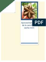 DAFAD-SACHA INCHI.doc