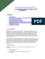 Estudio y Evaluación Del Control Interno y Ciclo de Ingresos
