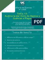 Auditoria de Ciclo de Gastos y Cuentas Por Pagar