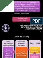 endokrinologi jurnal