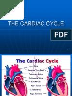 the cardiac circle