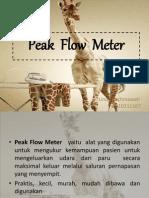 Peak Flow Meter-LINDA.ppt