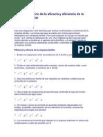 Auto Diagnóstico de La Eficacia y Eficiencia de La Empresa Familiar
