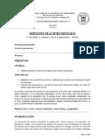 informe organik