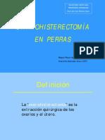 ovariohisterectomia