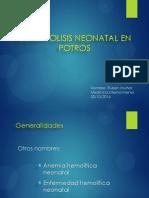 Isoeritrolisisneonatalenpotros Final