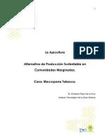 Apicultura en Tabasco