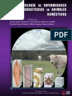 Epidemiologia parasitaria de animales domesticos
