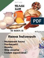 Presentasi Protein