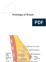 Histology of Breast