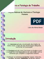 Noções Basicas e Anatomia e Fisiologia