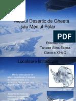 Geografie...Mediul Polar