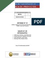 Pegp47 Informe01 g09 Rev