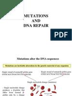MolBiol_05_DNArepair