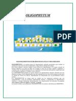 OLIGOPHYTUM2