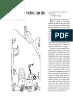 El Comunismo Molecular de Felix Guattari