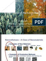 2013feb12-marketMArket Prospects for NanoCelluloseprospectsfornanocellulose-brucelyne