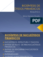 BioSINTEIS DE NUCLEOTICOS PIRIMIDINICOS