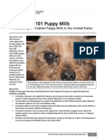 101-puppy-mills-report-2014