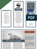 polar bear brochure