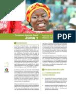Agenda Zonal 1