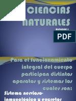 Ciencias Naturales (Presentacion) (2)