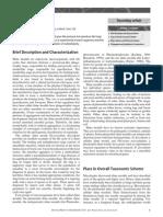 slime_moulds.pdf