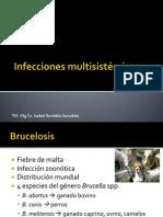 Brucelosis, Malaria, Chagas y Fiebre Tifoidea-paratifoidea