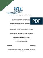 Manual de Netbeans UNIDAD 5