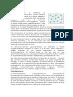 propiedades magneticas analisisi delos tipos de materiales magneticos