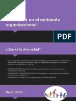 Diversidad en El Ambiente Organizacional