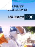 Album de Recoleccion