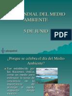 Programa Día Del Medio Ambiente 2008