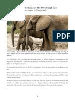 elephants - persuade